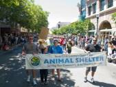 Santa Cruz County's Open-Door Animal Shelter