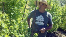 Mike Corral: Homegrown Naturally