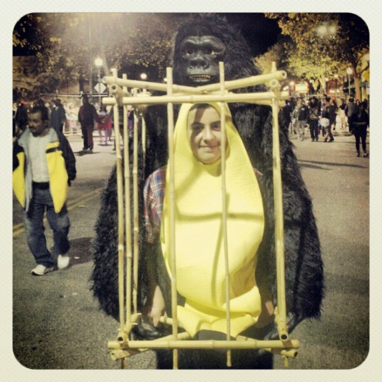 Gorilla with Caged Banana