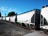what is this train carrying?