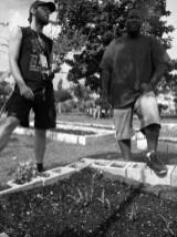 garden15_11-19-03