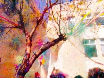 holi-festival_9_3-30-13