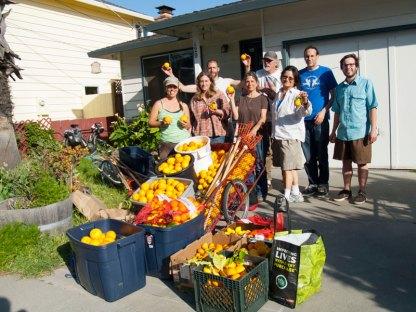 Santa Cruz Fruit Tree Project