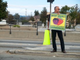 Mike Miguel Correa, an old school Chicano from Soledad, holds a Boycott Driscoll's sign on Freedom Boulevard in Watsonville.
