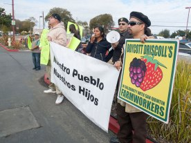 Boycott Driscoll's in Solidarity with San Quintin Farmworkers