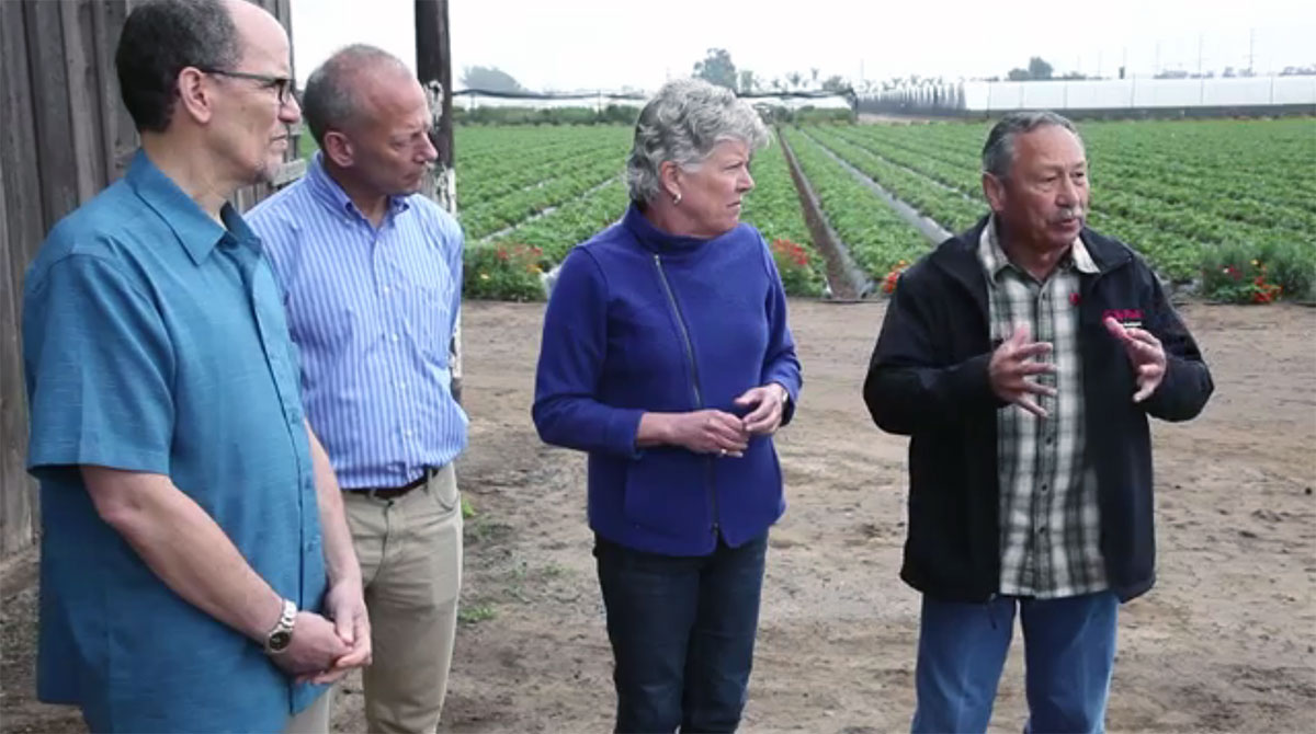 U.S. Secretary of Labor Thomas Perez (left) met with Equitable Food Initiative (EFI) Executive Director Peter O'Driscoll, Congresswoman Julia Brownley who represents California's 26th district, including Oxnard and most of Ventura County, and Arturo Rodriguez, President of United Farm Workers. April 8, 2016. Andrew & Williamson's Crisalida Berry Farm in Oxnard, California. Screenshot.