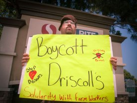 Boycott Driscoll's. Solidarity with Farm Workers