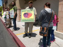 Safeway Customers Learn About the Driscoll's Boycott