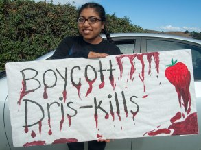 Boycott Dris-kills