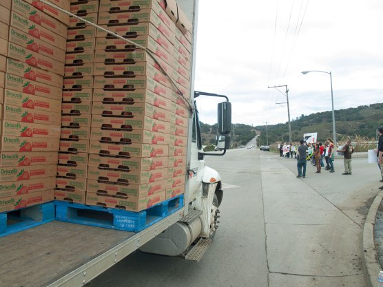 Royal Oaks Farms truck with pallets of strawberries is briefly delayed by symbolic action