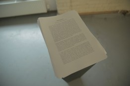 Exhibition Text, for download from this page