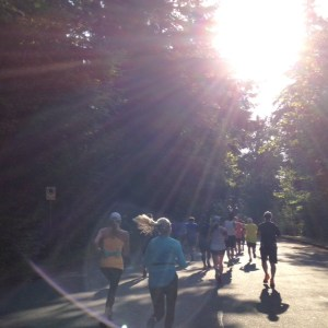 Run Stanley Park