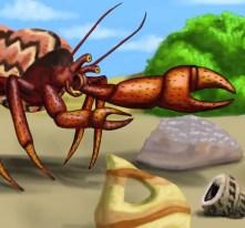 crabs rock garden1