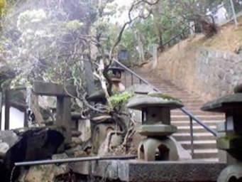 Angolo stupendo di un tipico giardino giapponese a Nara