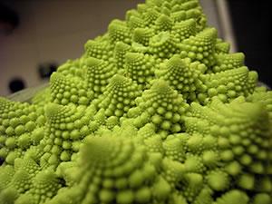 Il broccolo romano per fare la minestra