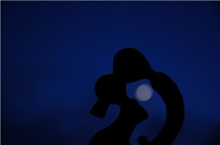 'Lovers kiss' in the moonlight