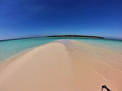 "I yet unnamed sandbar off Candaraman Island which I christened ""Starfish Alley""... for obvious reasons"