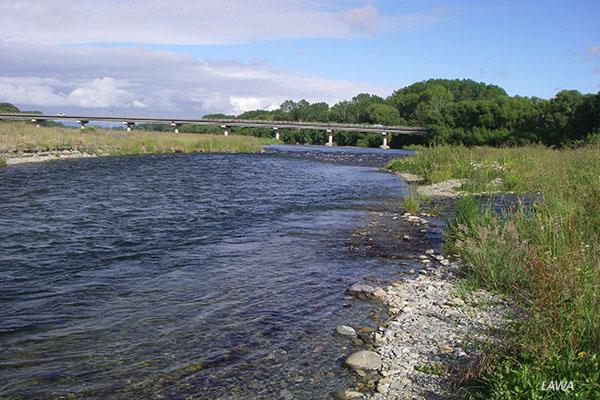 Opihi River at SH1 bridge: image LAWA