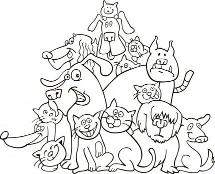 """Concurs de desene si colaje """"Intamplari cu bunici despre caini si pisici"""""""