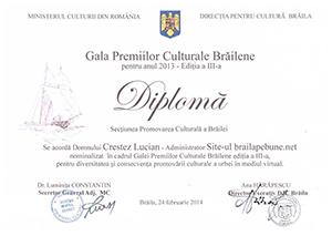 Rezumatul premiilor culturale brailene