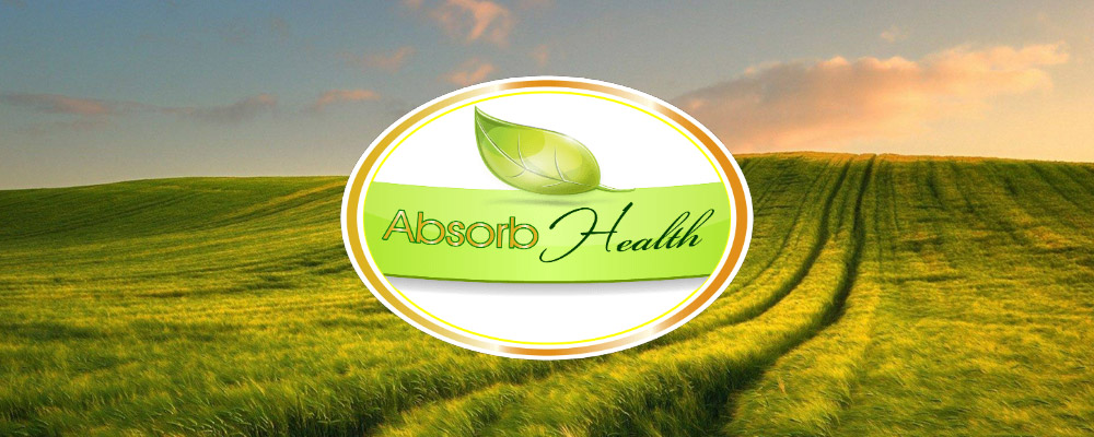 Absorb Your Health Review