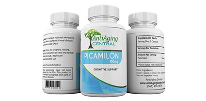 Picamilon Review
