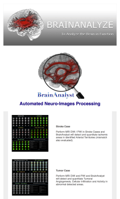 BrainAnalyst Newsletter