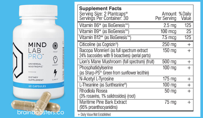 Mind lab pro ingredients and facts
