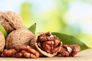 Health Benefits of Walnuts - The Brain Superfood