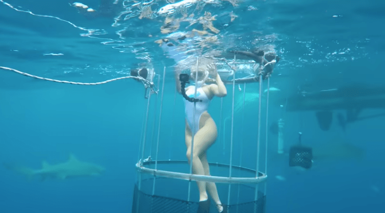 Porn Star Bitten By Shark While Filming