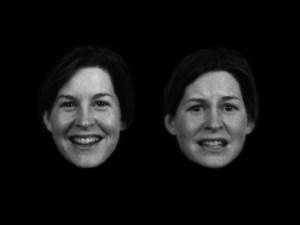 Faces Erp