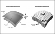 Appeared in Winkler et al. (2010), Neuroimage. [http://dx.doi.org/10.1016/j.neuroimage.2009.12.028]