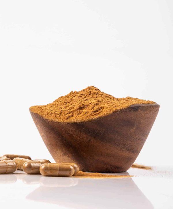mushroom supplement bulk