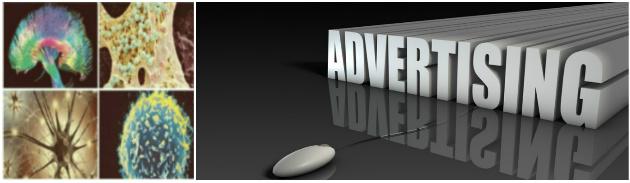 Advertising at BrainImmune