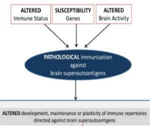 Most Read Brain Superautoantigens