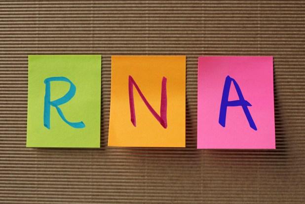 RNA (Ribonucleic acid) acronym on colorful sticky notes