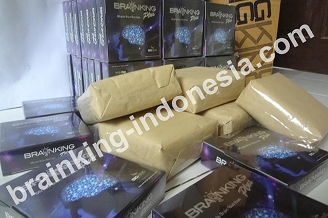 Brainking-Indonesia, stokis brainking plus terbesar dan terpercaya. Melayani pengiriman ke seluruh Indonesia