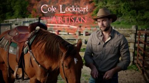 Cole Lockhart, Showtime, The Affair