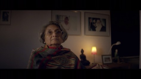 Ma Anand Sheela, Wild Wild Country, Netflix, Duplass Brothers Productions