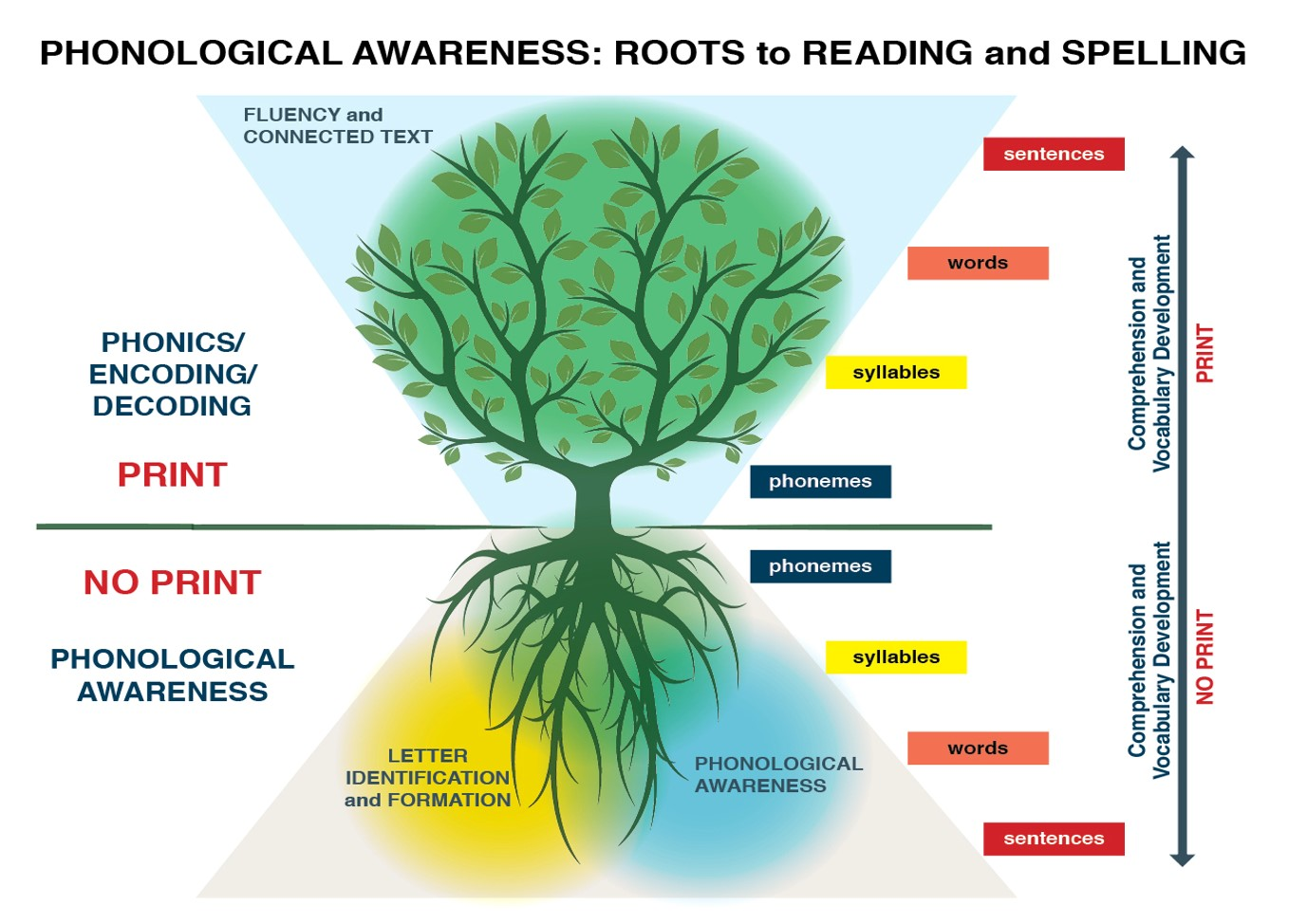 The Roots To Reading And Spelling