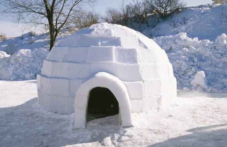 otro iglú