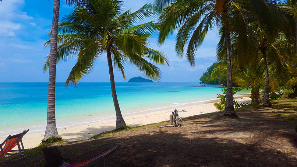 Beach and palm trees in Koh Bulon Lae