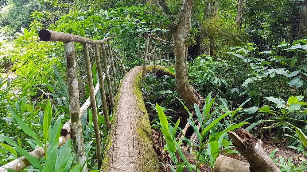 La Batata Trail