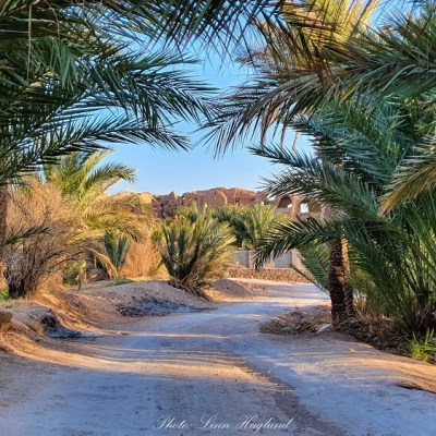 How to spend two days in Garmeh Iran: A desert oasis