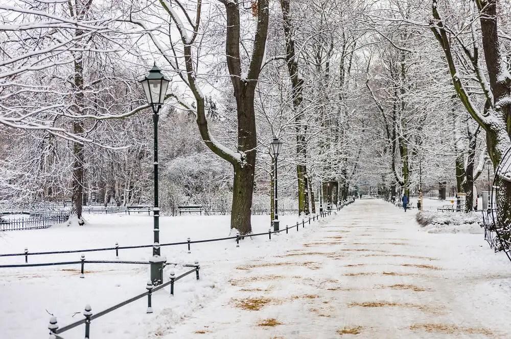 A park in Krakow in winter