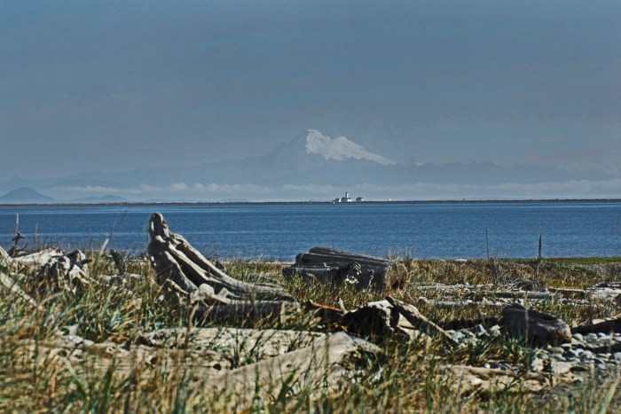 View from the Dungeness sand spit looking across the Strait of Juan de Fuca at Mt. Baker in the distance