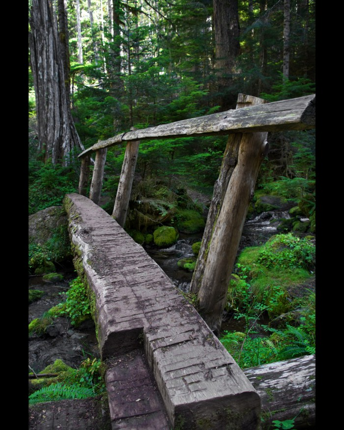 Hand-made footbridge out of downed trees crossing a stream on the Lake Angeles trail
