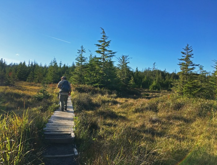 Michael on the boardwalk through the meadow on Cape Alava Trail