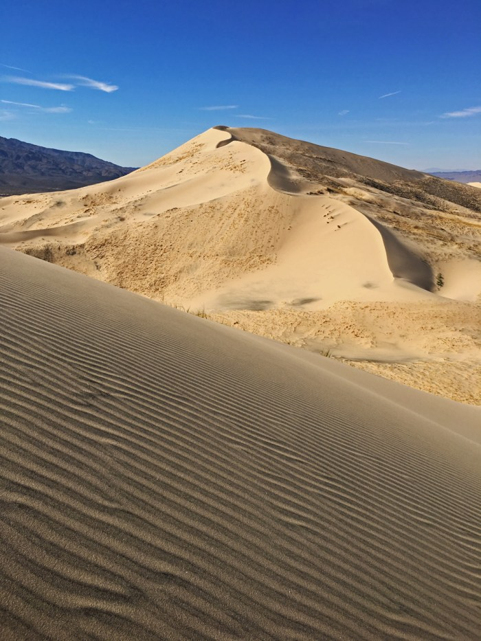 Shot of the Kelso Dunes with the rippled slope of one dune in the foreground and the curvy peak of another dune in the distance