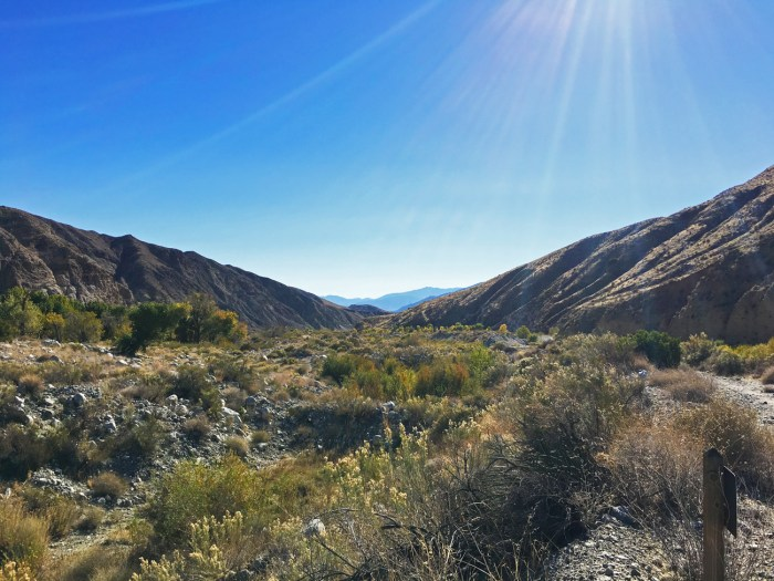 Desert valley with mountains on both sides at Whitewater Preserve